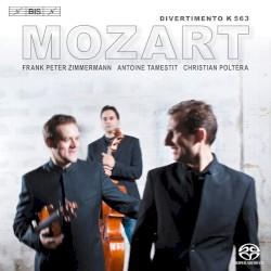 Divertimento K. 563 by Mozart ;   Frank Peter Zimmermann ,   Antoine Tamestit ,   Christian Poltéra